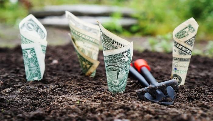 المصارف الزراعية